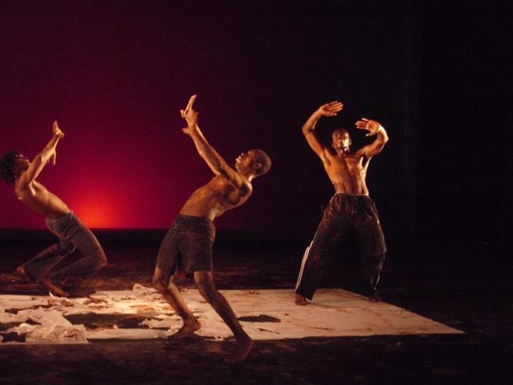 La compagnie de Danse Jean René Delsoin a offert un spectacle hors pairs aux américains